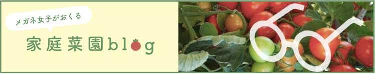 家庭菜園ブログ